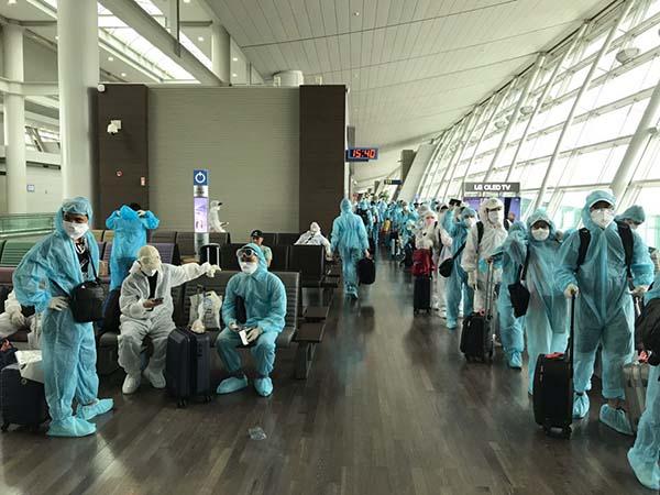 Đưa 230 công dân Việt Nam từ Hàn Quốc về nước an toàn
