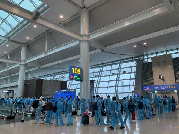 Hỗ trợ đưa hơn 300 công dân Việt Nam từ Hàn Quốc về nước an toàn