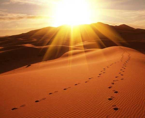 20 câu nói hay giúp bạn lấy lại niềm tin và động lực cuộc sống