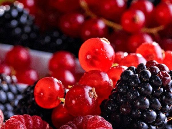 Bí quyết trẻ lâu: Hãy ăn các loại quả mọng mỗi ngày