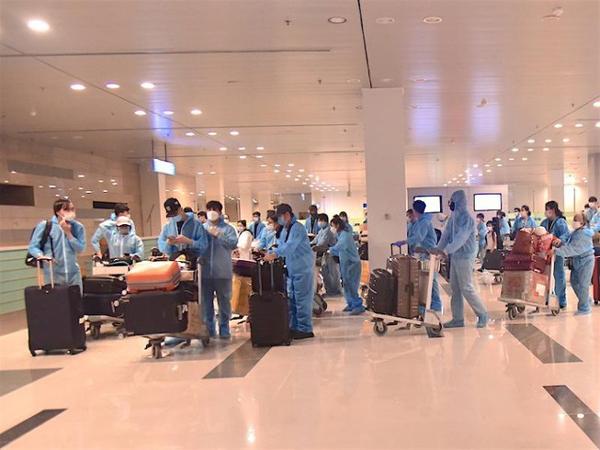Gần 240 công dân Việt Nam tại Hàn Quốc được đưa về nước