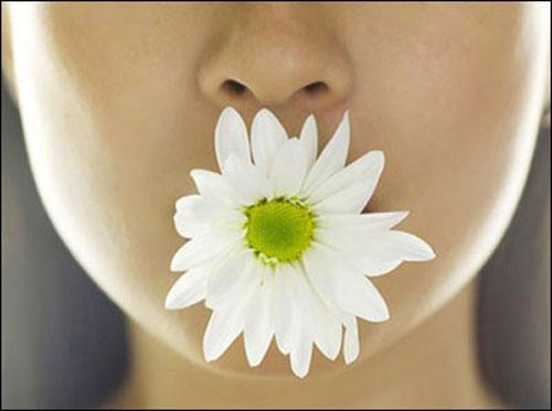 Tu cái miệng là tu hơn nửa đời người