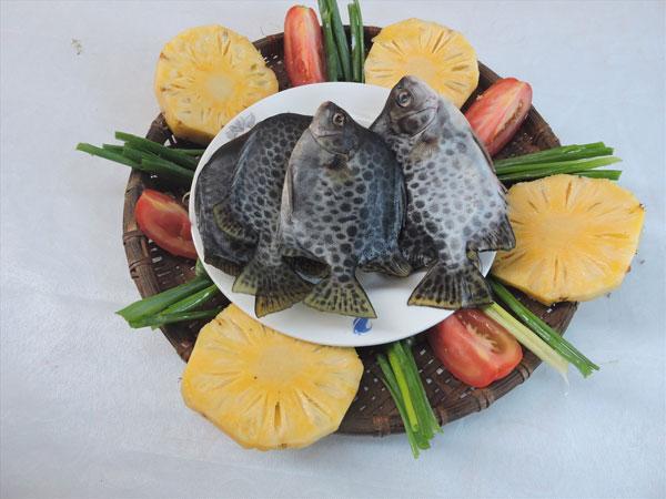 Cá nâu nấu canh thơm cà