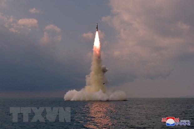 HĐBA họp khẩn cấp về vụ Triều Tiên phóng thử tên lửa từ tàu ngầm